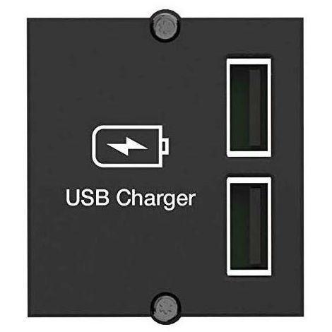 Custom Modul 2 x USB Charger